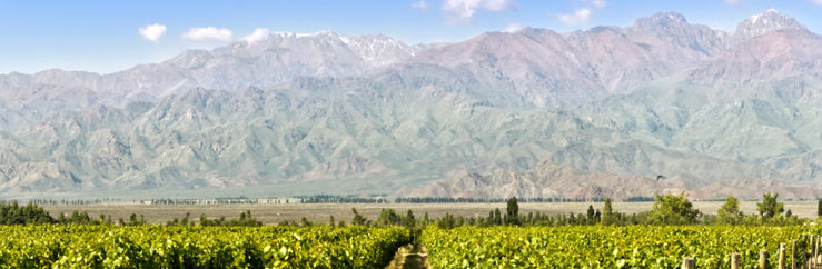 Spanish Courses and Classes in Mendoza - © Edsel Querini