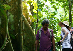 Study Spanish and hike in the Amazon Jungle