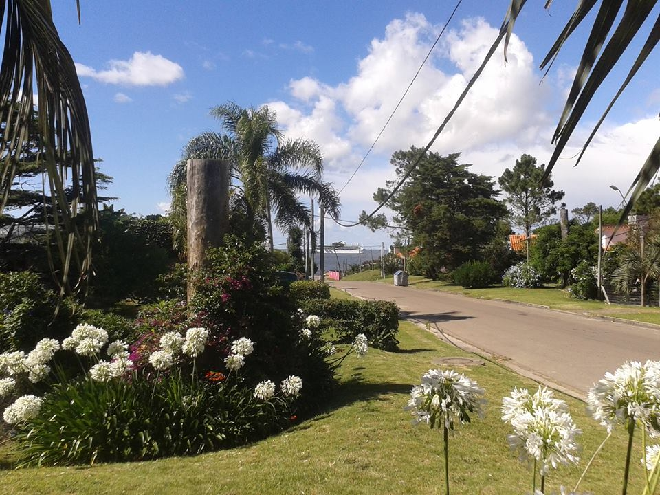 Garden in Punta del Este language school
